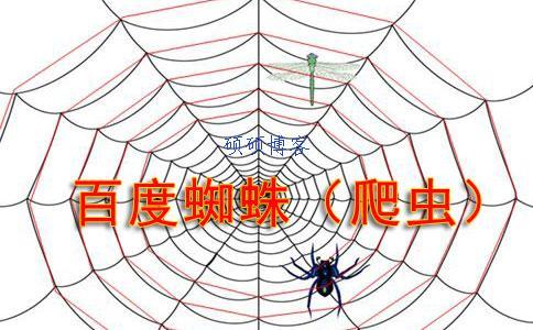 大量百度蜘蛛