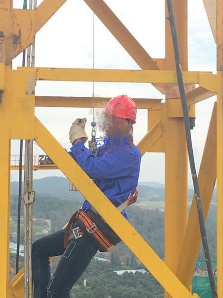 塔吊防坠器1